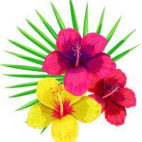 fleur de santé
